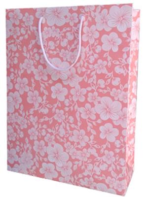 Paperbag As 22